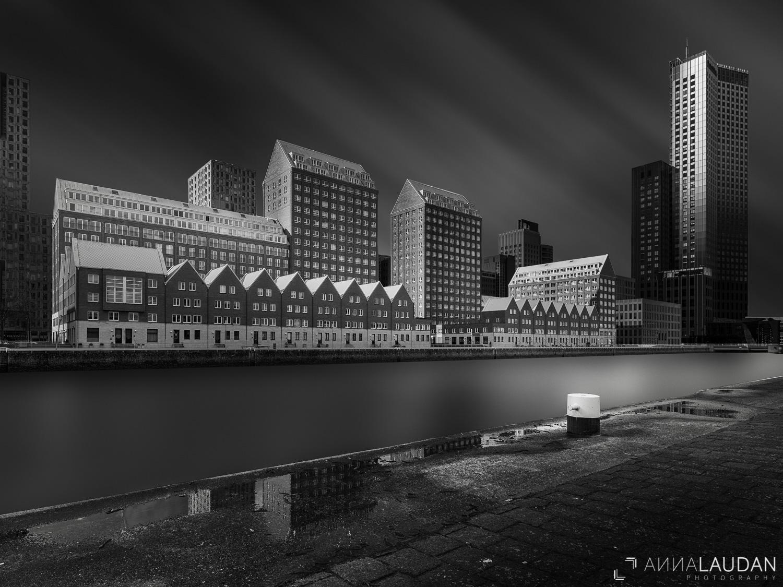 Rotterdam: Part III